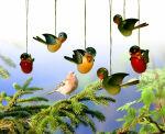 Verschiedene Vögel zum aufhängen, 6-Stück im Karton, farbig